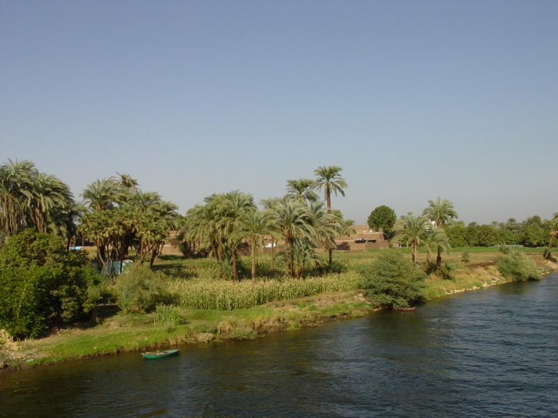 Arke-Egypt-208