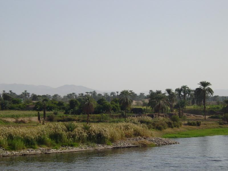 Arke-Egypt-212
