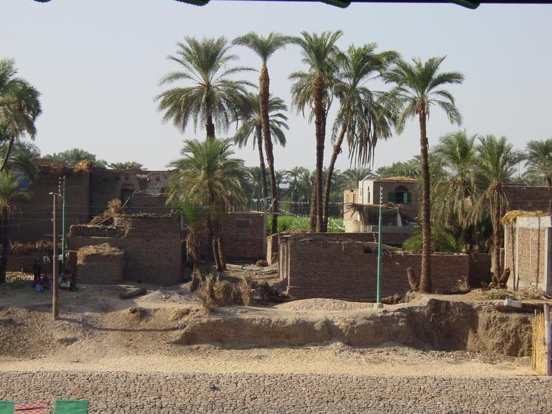 Arke-Egypt-215