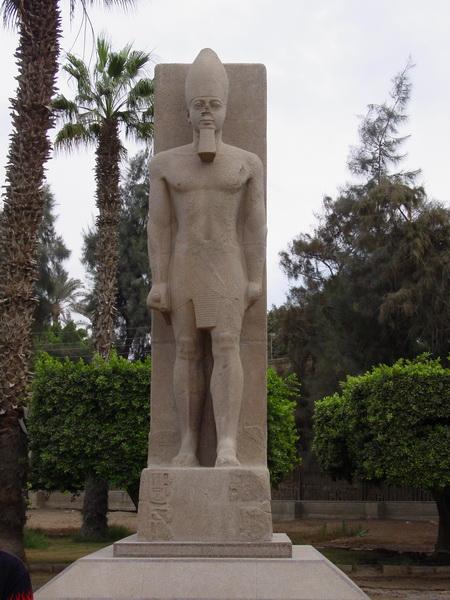 Arke-Egypt-250
