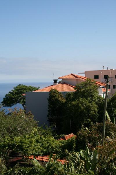 Arke-Madeira-002