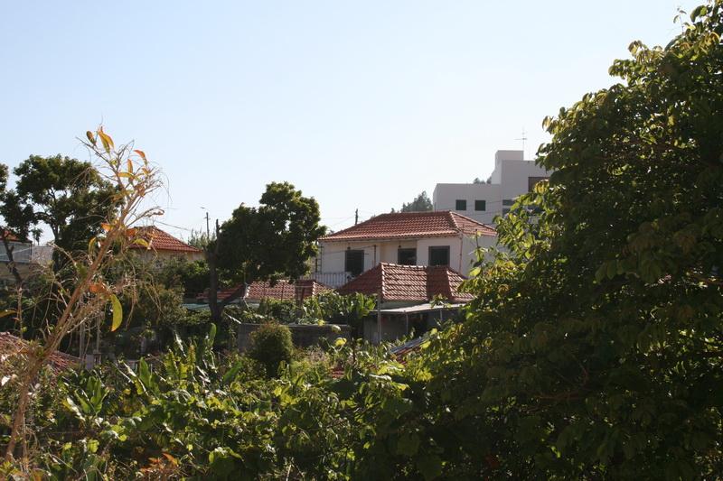 Arke-Madeira-004