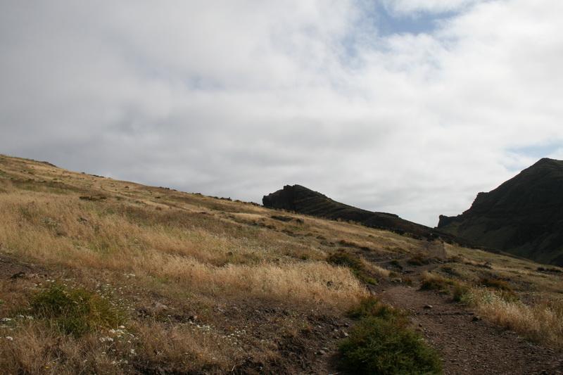 Arke-Madeira-009