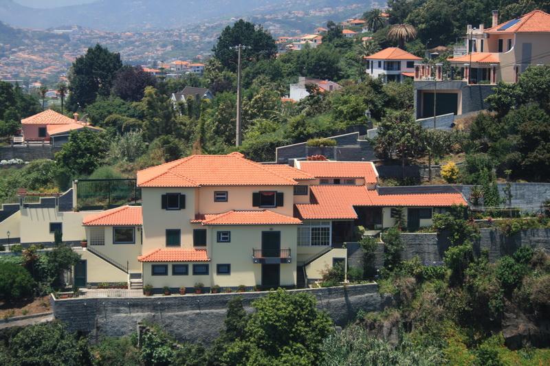 Arke-Madeira-159