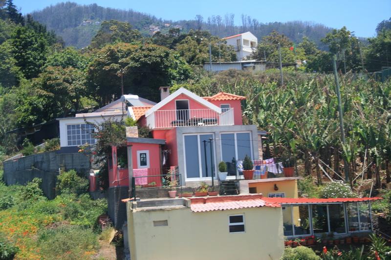 Arke-Madeira-162