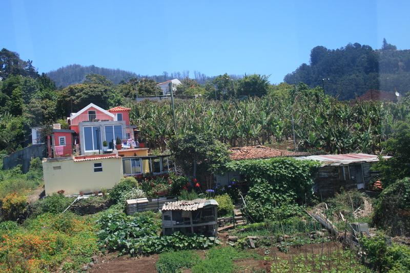 Arke-Madeira-164