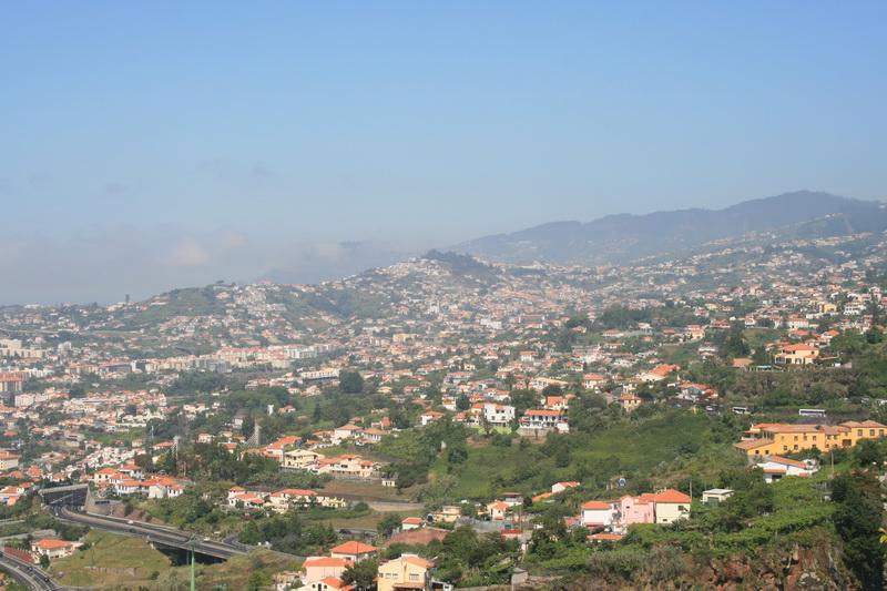 Arke-Madeira-205