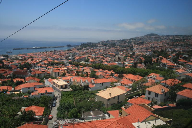 Arke-Madeira-308