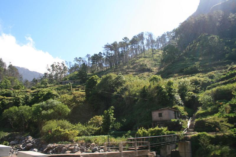 Arke-Madeira-321