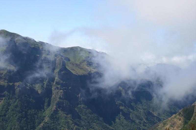 Arke-Madeira-334