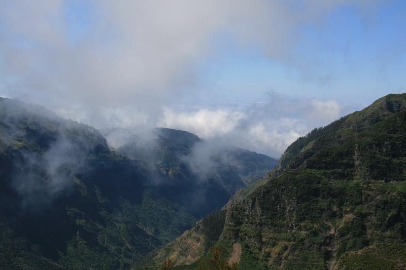 Arke-Madeira-335
