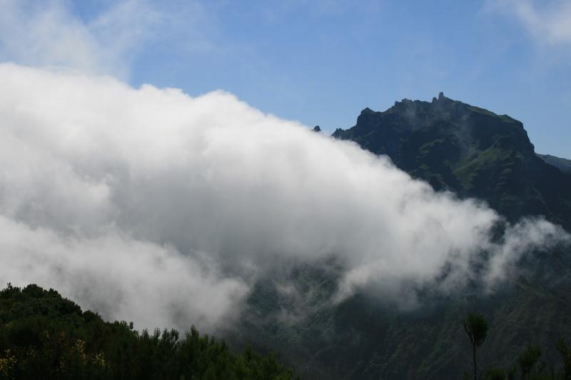 Arke-Madeira-337
