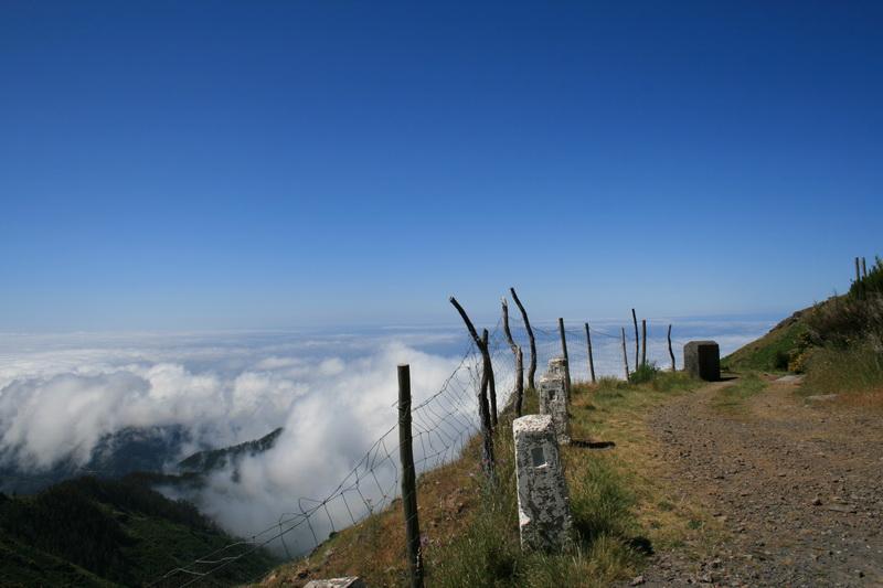 Arke-Madeira-341