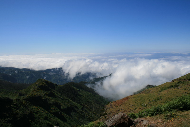 Arke-Madeira-346