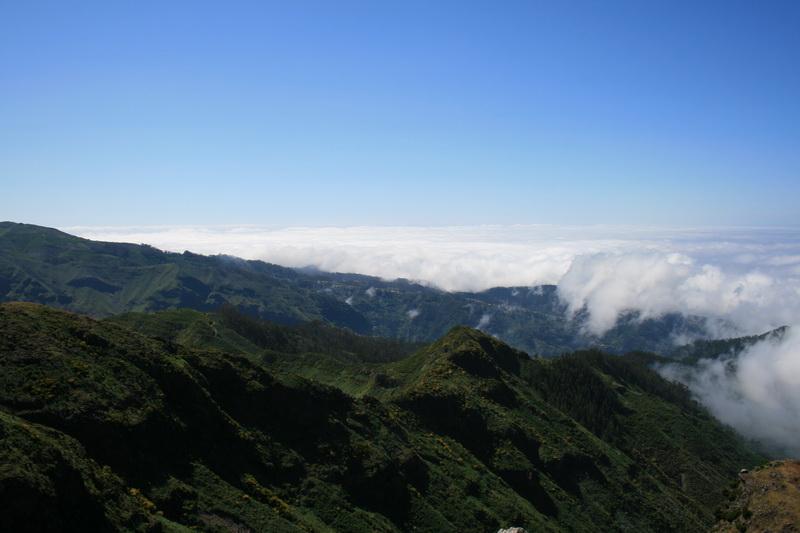 Arke-Madeira-347