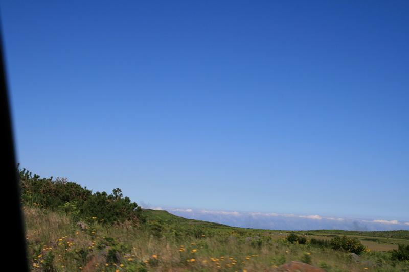Arke-Madeira-352