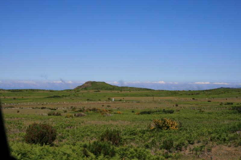 Arke-Madeira-353