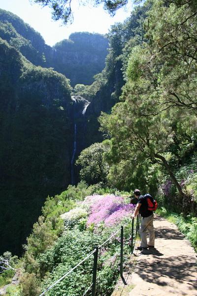 Arke-Madeira-363