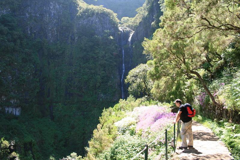 Arke-Madeira-364