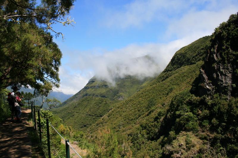 Arke-Madeira-365