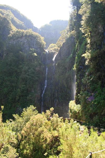 Arke-Madeira-366