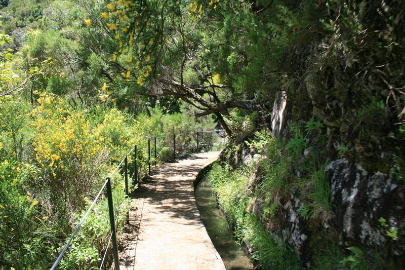 Arke-Madeira-376
