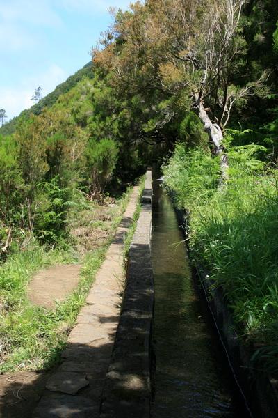 Arke-Madeira-379