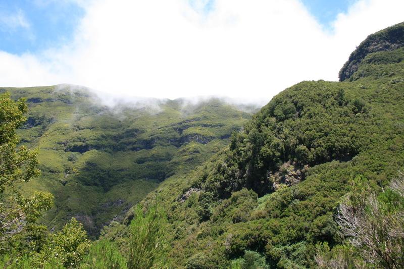 Arke-Madeira-390