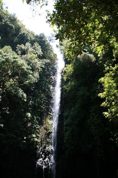 Arke-Madeira-392