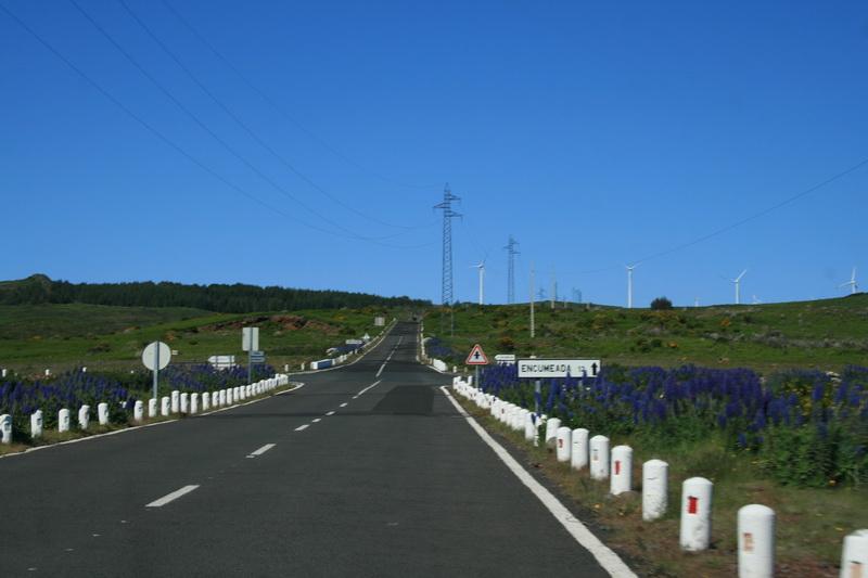 Arke-Madeira-415