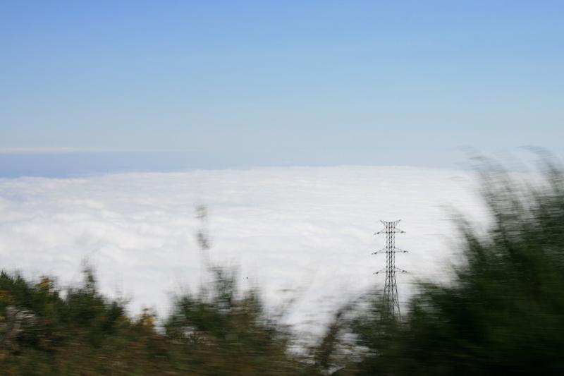 Arke-Madeira-423