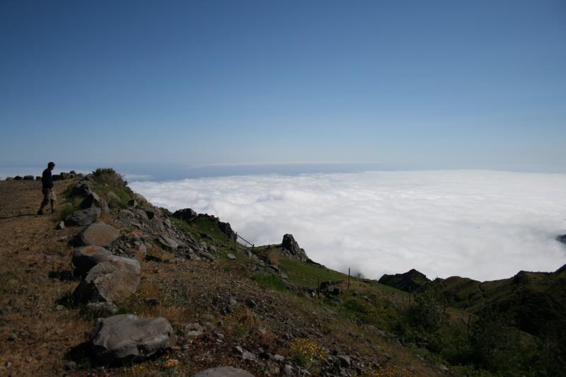 Arke-Madeira-426