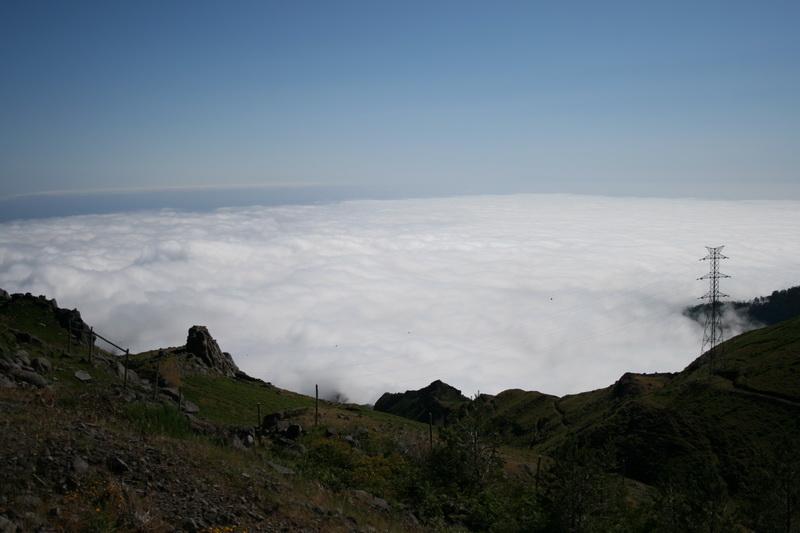 Arke-Madeira-427