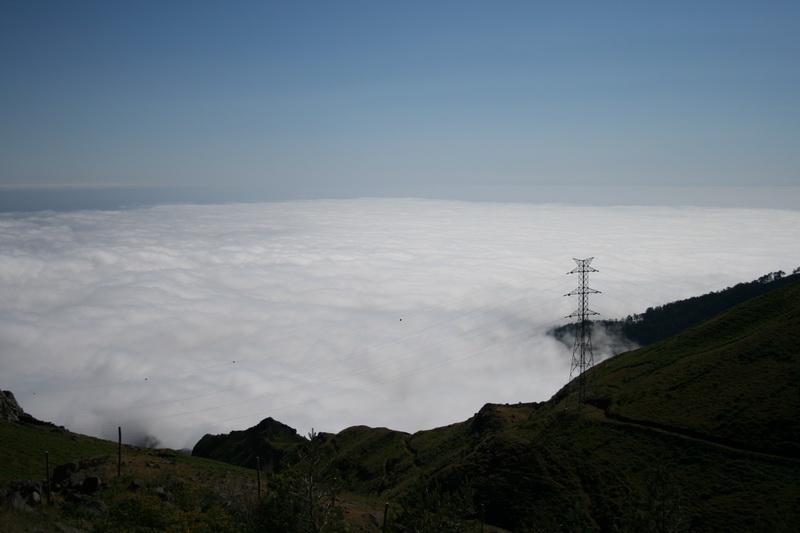 Arke-Madeira-428