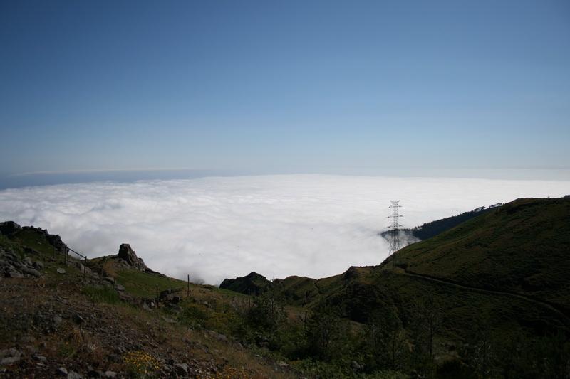 Arke-Madeira-429