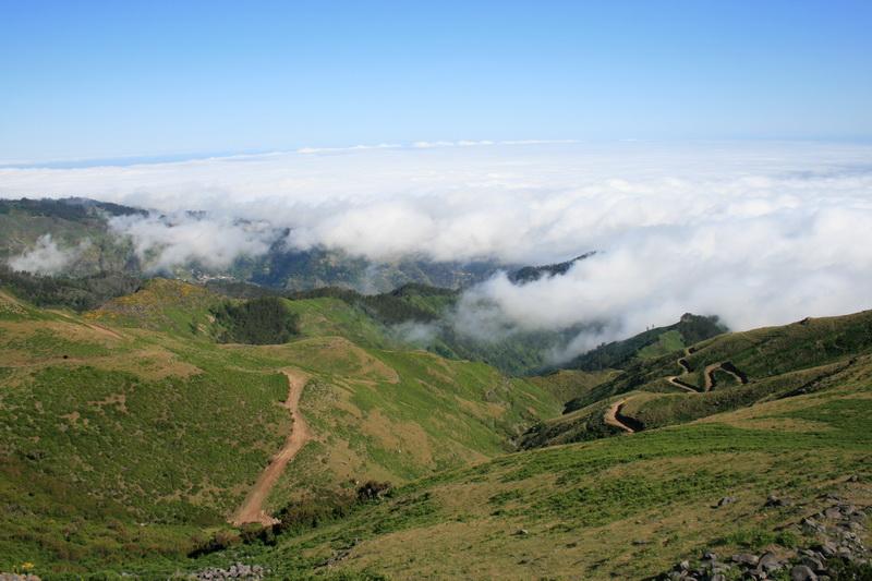 Arke-Madeira-436