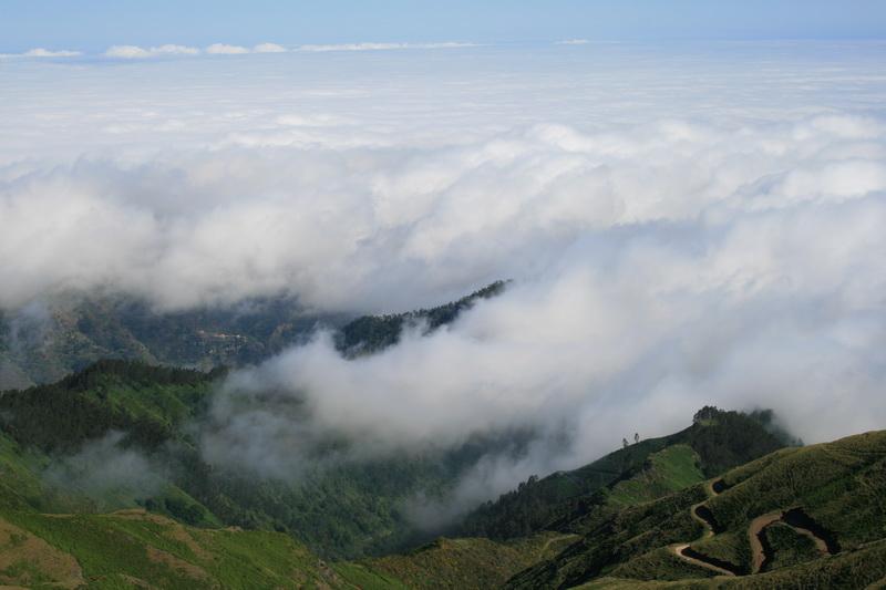 Arke-Madeira-441