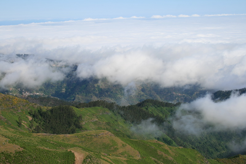 Arke-Madeira-442