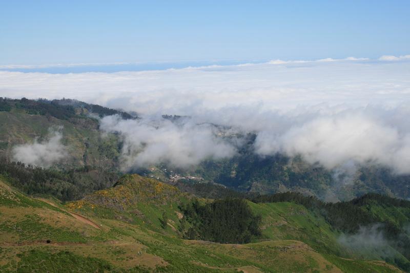 Arke-Madeira-444