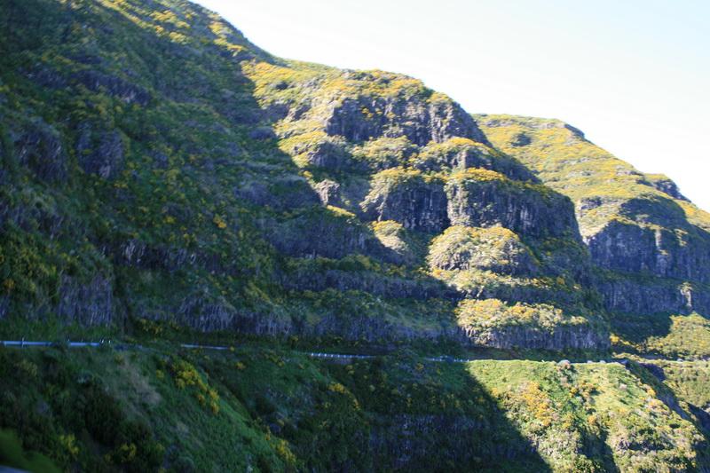 Arke-Madeira-454