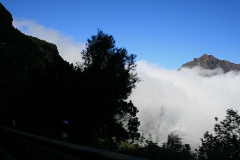 Arke-Madeira-466