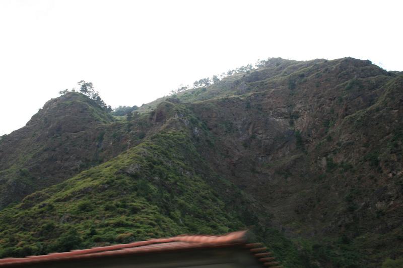 Arke-Madeira-481