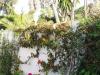 Marbella-2004-15