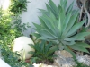 Marbella-2004-19