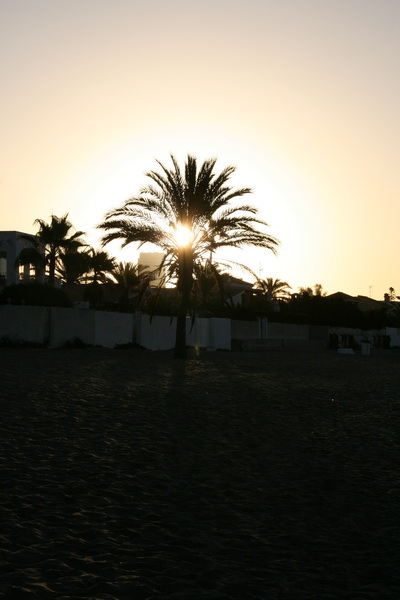 Marbella-2010-054