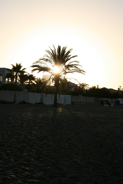 Marbella-2010-055