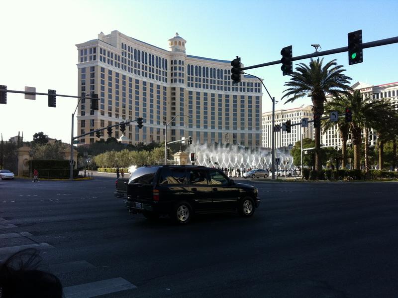 Arke-Vegas-264