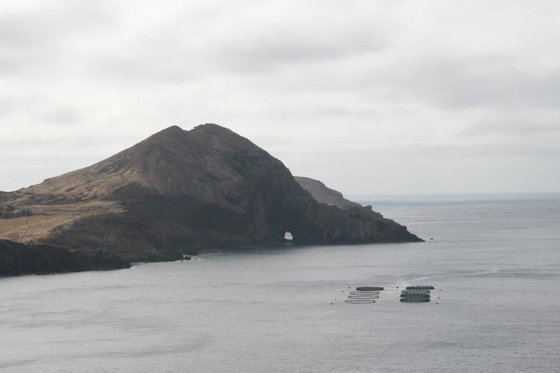 Arke-Madeira-007