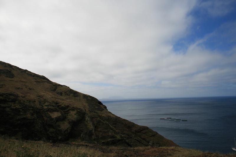 Arke-Madeira-027
