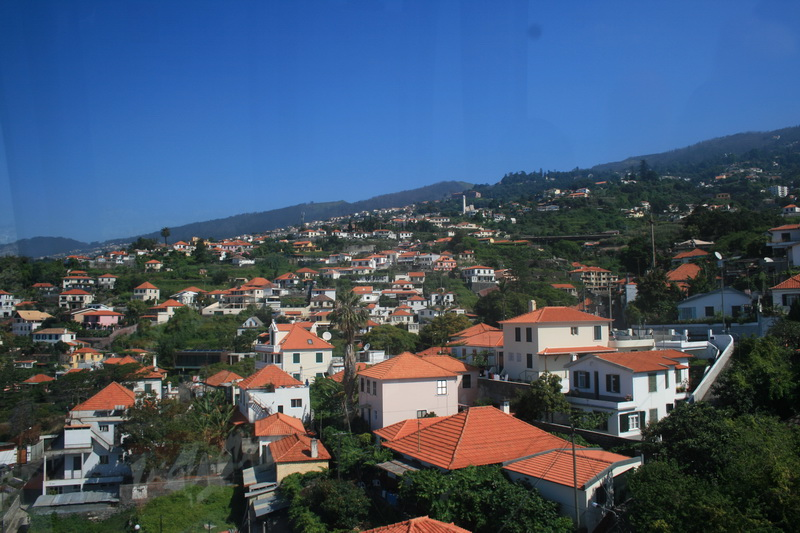 Arke-Madeira-052